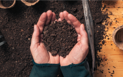 Soil | Episode 3 | Try This At Home