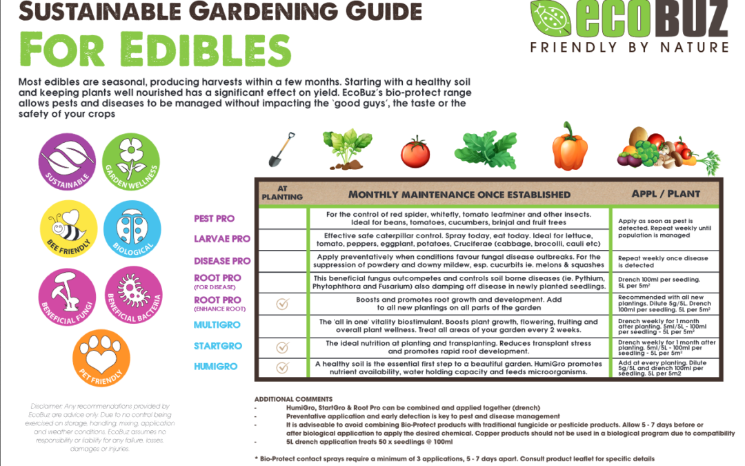 Sustainable Gardening Guide for Edibles